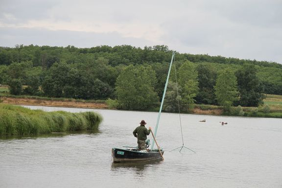 Net fishing on the Seille