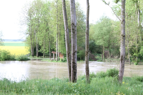 The Armancon River along the Burgundy Canal in flood
