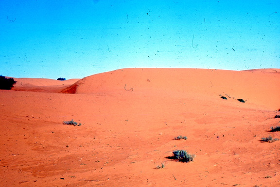 Red sand hills in this area