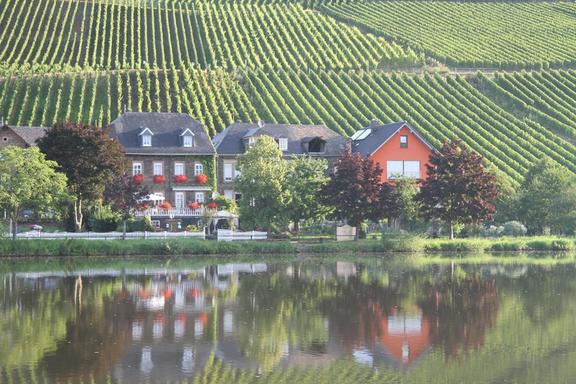Returning along the Mosel