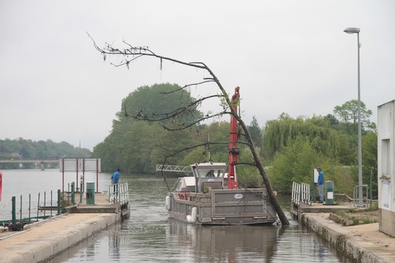 VNF Barge clearing a dead tree from the lock approach